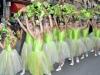 061_pozarevacki_karneval_2012