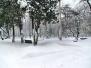Зима у Пожаревцу - 2011/2012