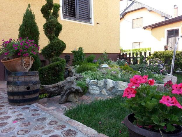 Nagrađeni, jedno od najlepših dvorišta