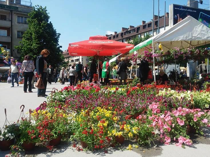 Cvetni aranžmani u centru varoši