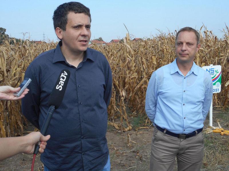 Stručne konsultacije o hibridima kukuruza