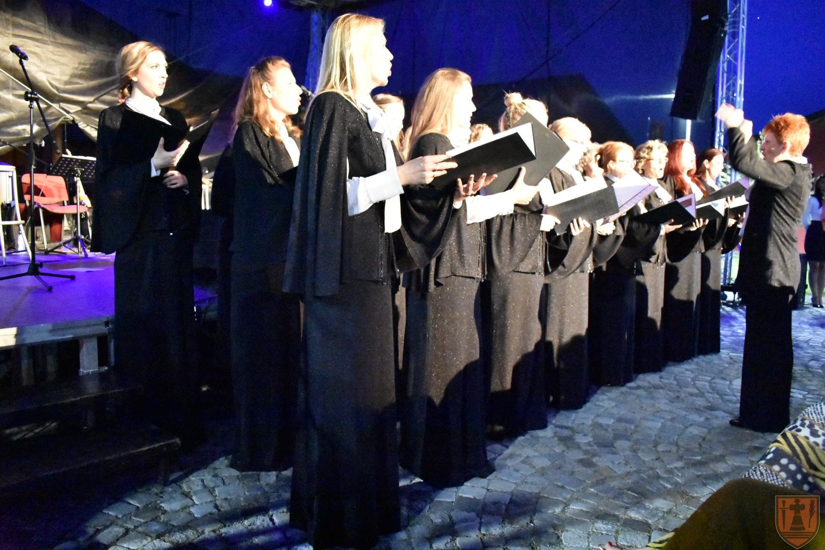 """Koncertom Radeta Šerbedžije otvoren """"Viminacijum fest"""" 20094"""